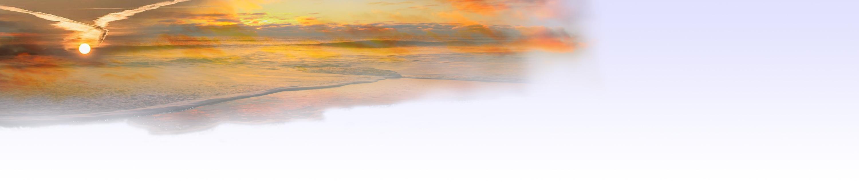 wolkenvogel-neu.jpg